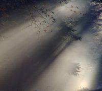 sunbeam-76825_640